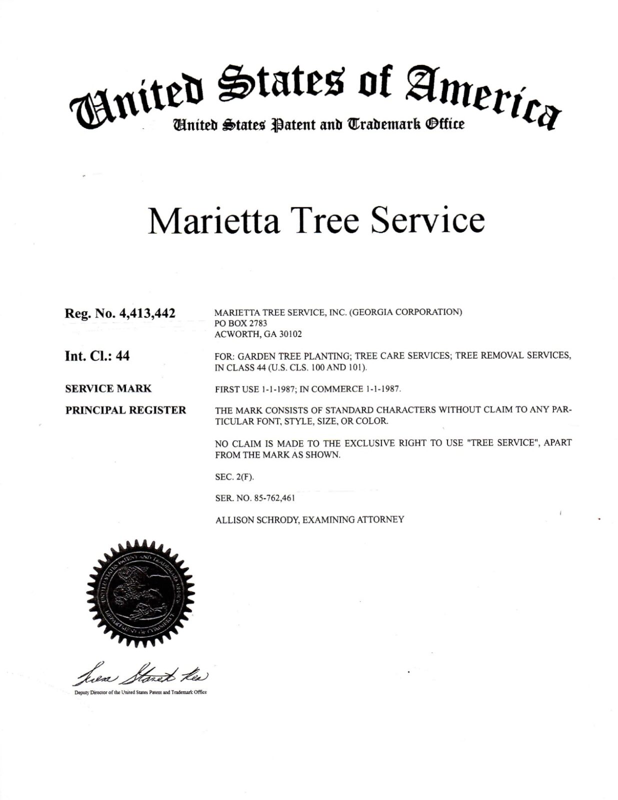 About Us - Marietta Tree Service - Licensed & Certified