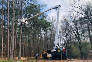 Tree Trimming Marietta Tree Service