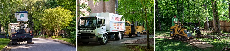 Marietta & Acworth Tree Removal
